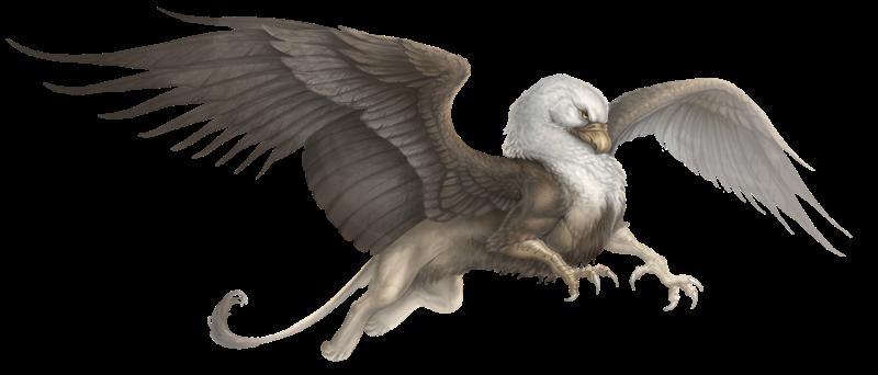 aventuria_bestiary___gryphon_by_gaiasangel-d9l5mpr